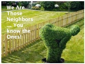 we are those neighbors