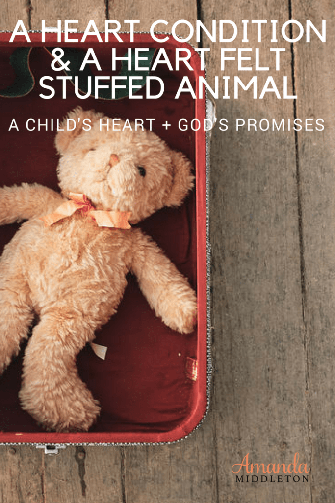 A Heart Condition And A Heart Felt Stuffed Animal